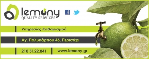 LEMONY QUALITY SERVICES
